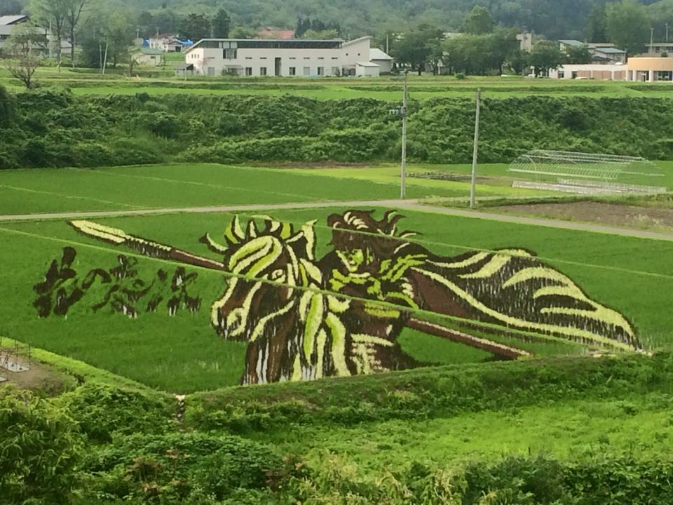 花の慶次☆小野川温泉の田んぼアートは必見ですよ♪