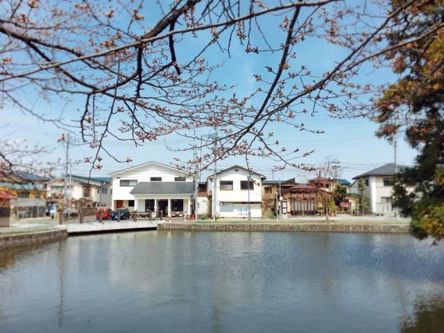 松が岬公園側から見えるカフェ蓮櫻さん