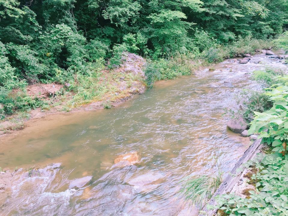 翌朝、昨日の朝の川の様子~