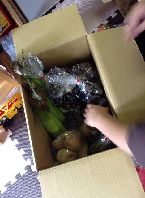 枝豆、カボチャ、じゃがいも2種、きゅうり、長なす、丸小なす、トマト、とうもろこし、ししとうと米沢の夏野菜いっぱい!(#^.^#)