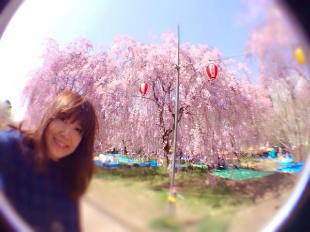 桜の便りが次々と。仙台、山形でおすすめの花見スポット♪