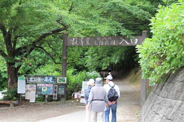 山形への旅。新潟を通過するルートに護摩堂山あじさい園巡り♪