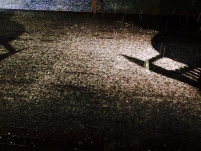 初めての積雪♪すみれガーデン(*^_^*)
