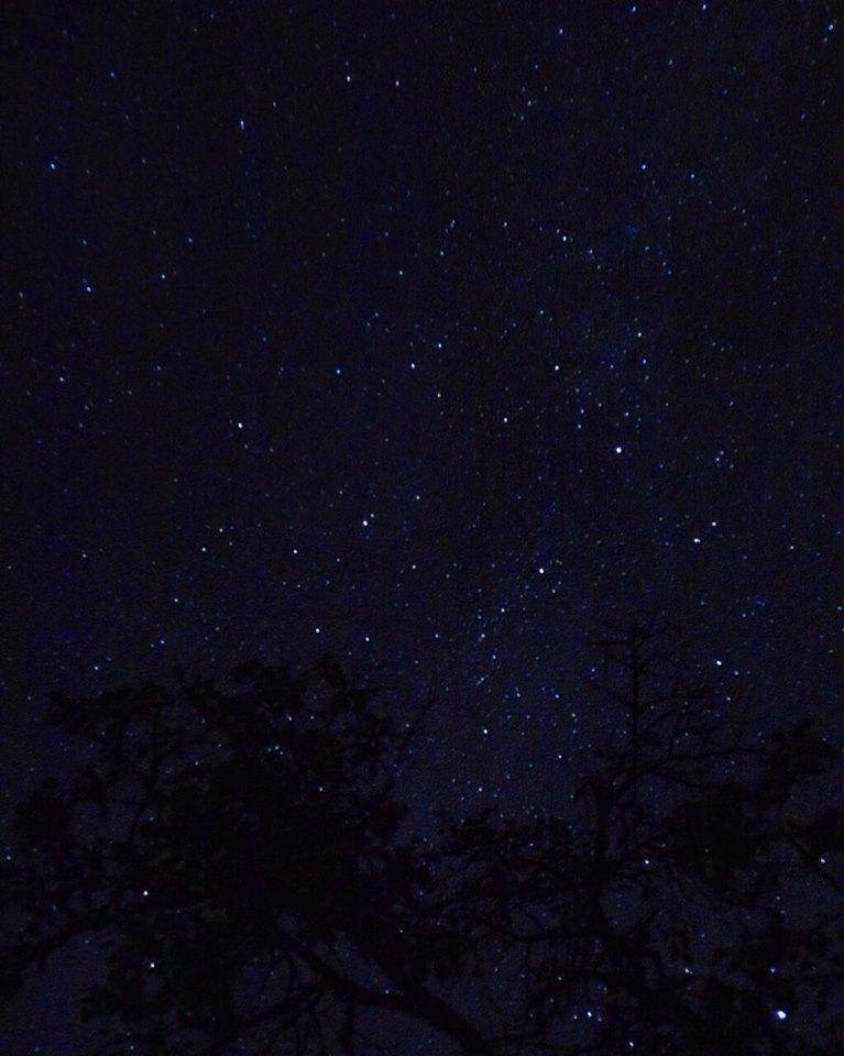 米沢 すみれガーデンからの満天の星ーかえでさんの写真よりー