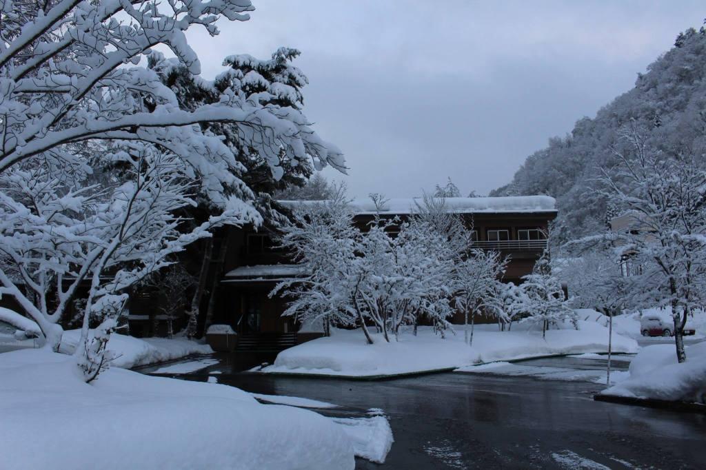 2015年元日の朝。すみれの外観を。寒かったのに ありがとう♪