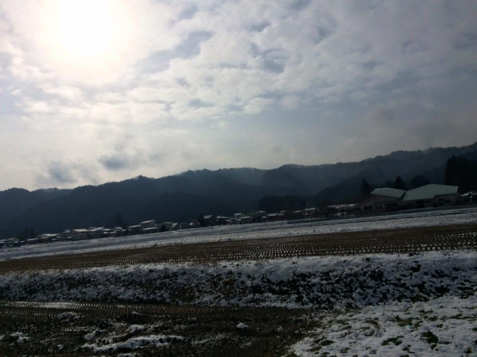 今朝のお宿近くの田園の風景