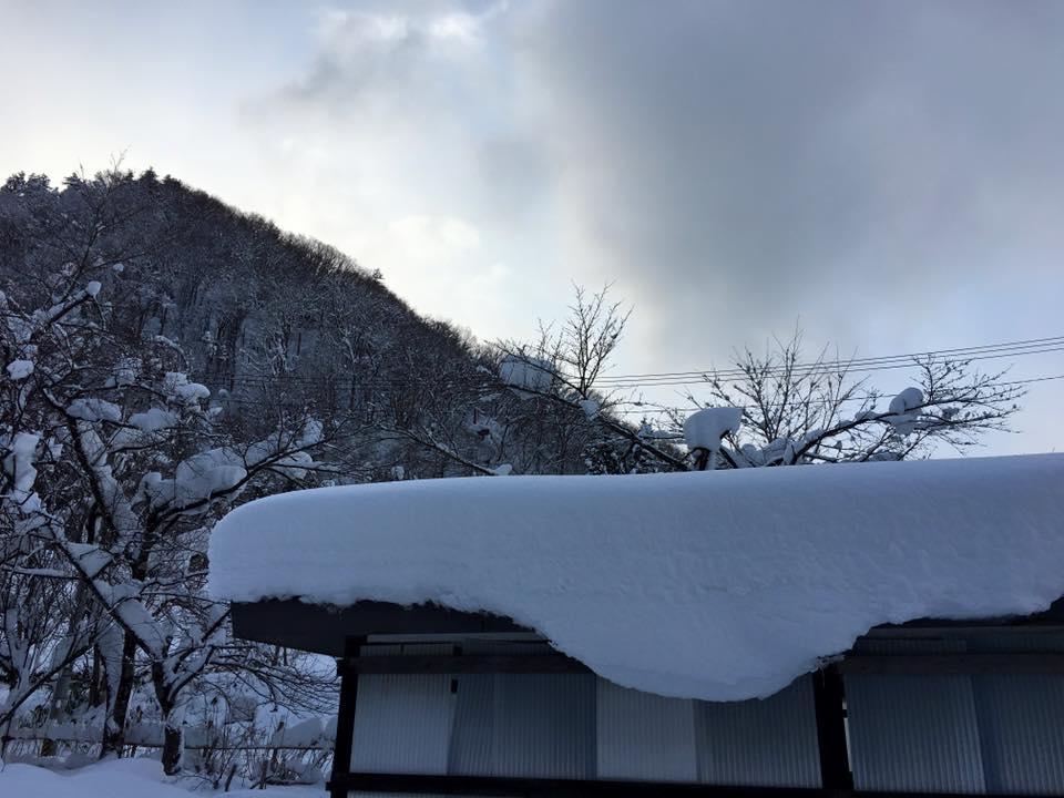 寒さも厳しくなってきましたが 、明日からは気温も少し上がります