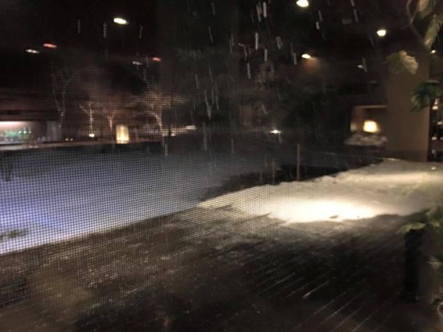 雨から 雪へ。すみれの夜