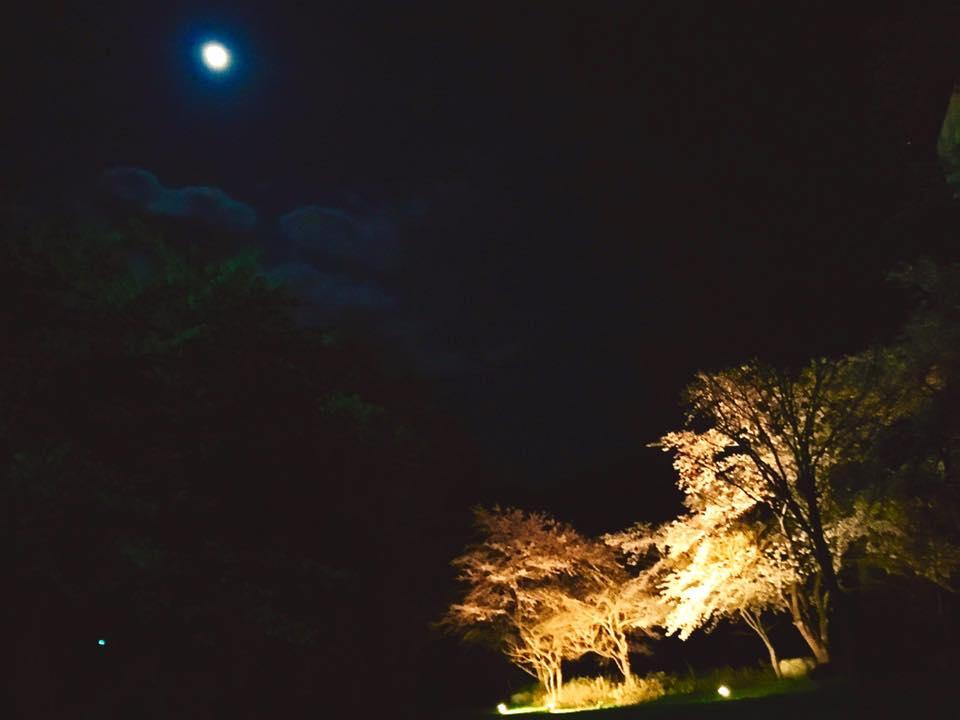 小野川温泉では 素敵なイベントもこれから開催~♪