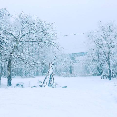 気になる 明日のお天気は?雪が降るの?寒いの?-米沢市の今1月4日~5日-