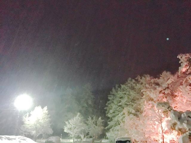 降り注ぐ雪