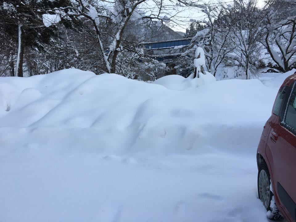 除雪した雪が積まれて 車の高さになりました^^