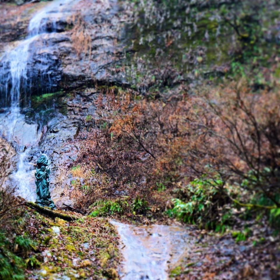 今朝はお宿のパワースポット裏山の大瀧不動尊に散歩にーかっちゃん撮影ー