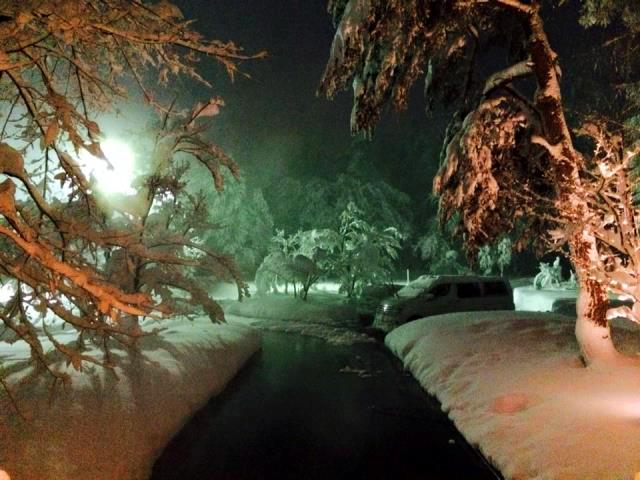 温泉で消雪しているところだけ雪ナシ