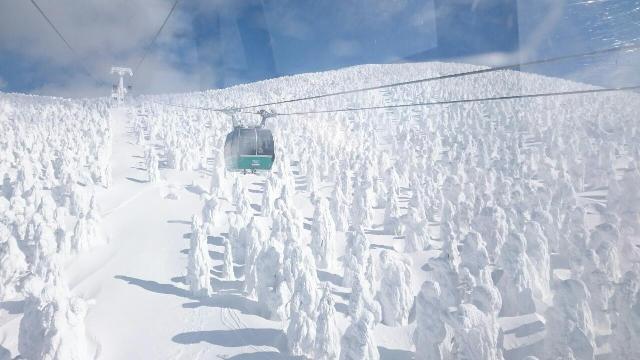 山形の大自然の神秘☆蔵王の樹氷が素晴らしいーお客様のご感想よりー