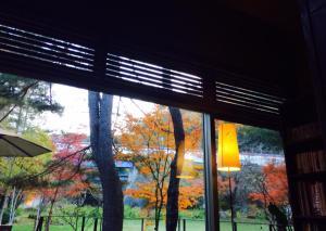 まだ 紅葉がきれいです