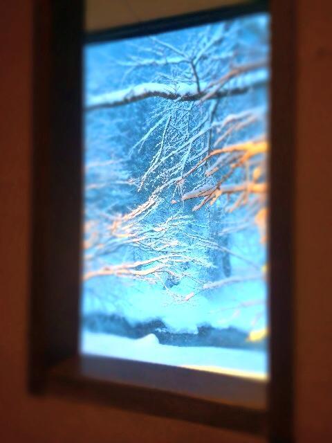 小窓から見えるあなたとの出会いも大切に想っているよ♪