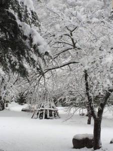 3日の朝はすっぽりと雪化粧のすみれガーデン♪