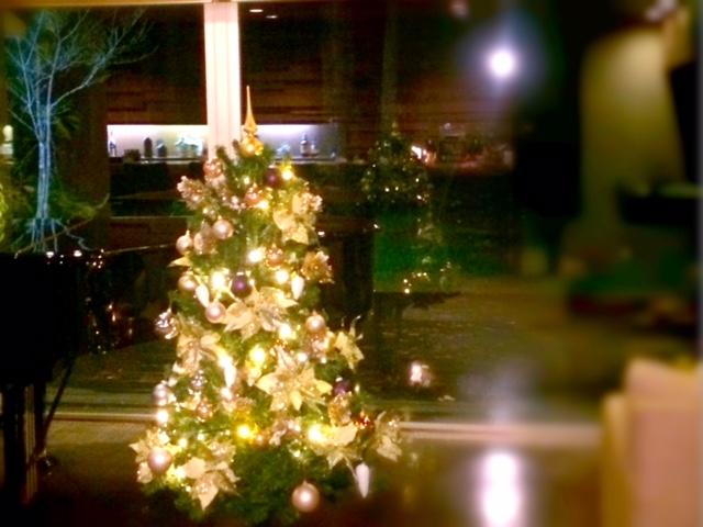 雪待ちのクリスマスツリー☆