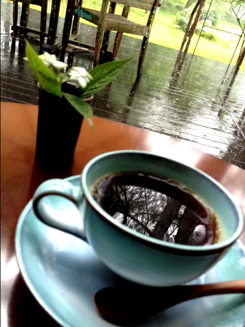すみれのコーヒーは珈琲家のマスターが焙煎