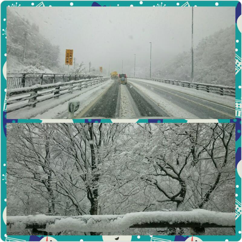 雪が降ったよ♪ -12月17日の雪景色-