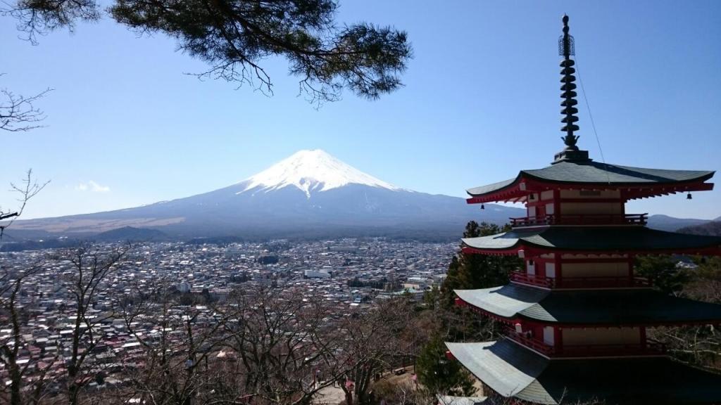 パワースポット浅間神社からの富士山の眺め♪-お客さまからの桜便り-